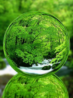 3D Nature View Mobile Wallpaper